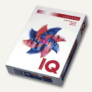 Artikelbild: Papiere IQ Economy