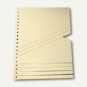 Artikelbild: Staffeltrennblätter 230 x 300 mm