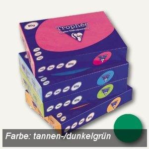 Clairefontaine Papier Trophee Intensiv, DIN A4, 120g/m², tannengrün, 1224C