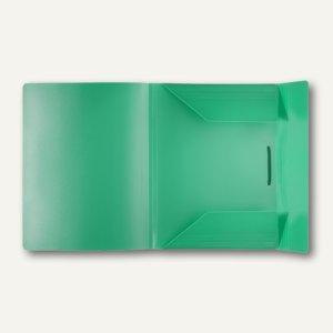 FolderSys Eckspanner-Sammelbox A4, grün, PP, VE 30 Stück, 1001550
