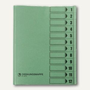 Bene Ordnungsmappe DIN A4, 12-teilig, grün, 83800 grün