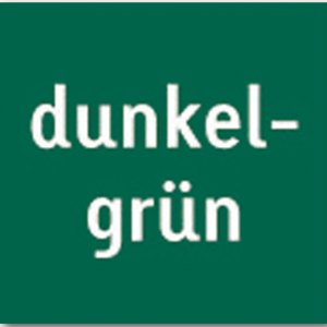 Heyda Tonpapier, DIN A4, 130 g/m², dunkelgrün, 100 Blatt, 204711459