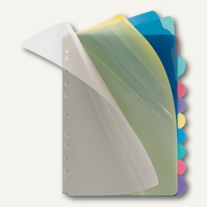 PP-Register 10-tlg., A4, blanko Taben, 5 farbig transparent, 25 St., 4248800