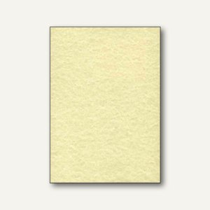 Sigel Struktur-Papier, DIN A4, Pergament champagner, 200 g/qm, 50 Blt., DP655