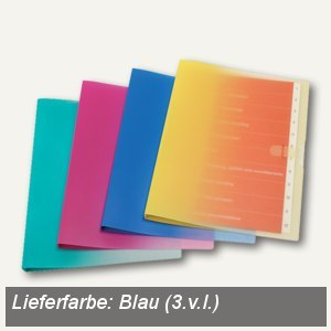 dataplus Ringbuch Smart, DIN A4, blau, 5-er Pack, 28142611
