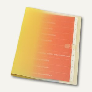 dataplus Ringbuch Smart, DIN A4, gelb, 5-er Pack, 28142661