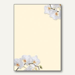 Artikelbild: Motiv-Papier White Orchid