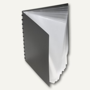 FolderSys Ring-Sichtbuch, DIN A4, 20 Hüllen, schwarz, 10St., 25008-30