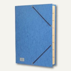 RNK Gummizugmappe, DIN A4, 9 Fächer, Sichtstanz., Registerschn., blau, 4616-4