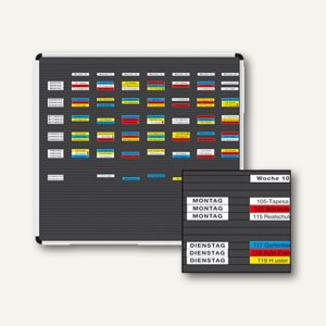Ultradex Planrecord Stecktafel, 93 Steckbahnen, 102 x 112 cm, 1016