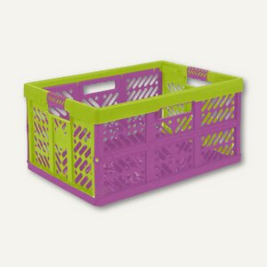 OKT Profi-Klappbox, 45 Liter, PP, 54 x 37 x 28 cm, lila/grün, 1029701000000