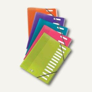 """Ordnungsmappe """"ELBA School Life"""", 12 Fächer, A4, PP, sortiert, 12 Stück, 4000065"""