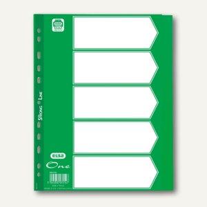 Elba Register One, DIN A4, 5-teilig, blanko, 120my, grün, 400010084