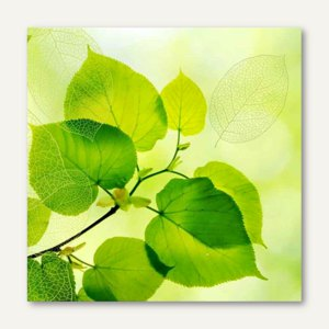 Artikelbild: Dekorservietten Green Leaves