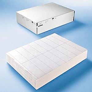 "Herma Folien-Etiketten ""DATAPRINT"", 203 x 297 mm, weiß, 250 Stück, 58101"