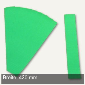 Einsteckkarten für 50 mm Magnetschienen, (B)420 x (H)46 mm, grün, 6 Stück, 84490