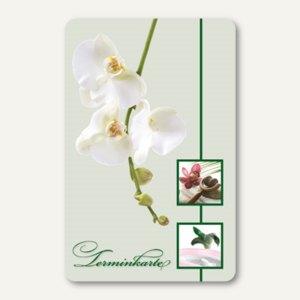 officio Terminkarte ORCHIDEEN, 6 Termine, 55 x 85 mm, zum Stempeln, 100 Stück