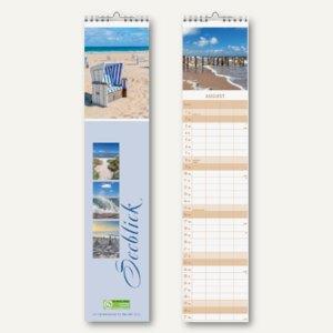 Artikelbild: Streifenkalender 120 x 500 mm