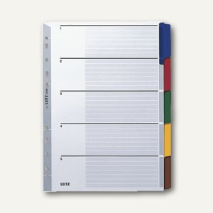 LEITZ Register DIN A4, Karton blanko, 5 Blatt, 4320-00-00