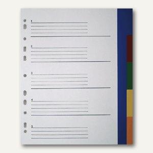 officio Register blanko, DIN A4+ Überbreite, 5-teilig, farbige Taben, PP
