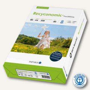 Artikelbild: Universalpapier Recyconomic Trend White