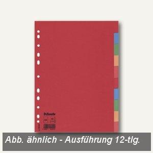 Karton-Register DIN A4 Blanko